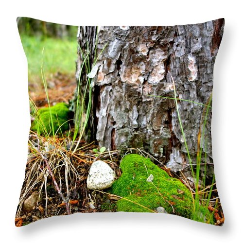 Forest Throw Pillow featuring the photograph Forest Floor by Jacqueline Athmann