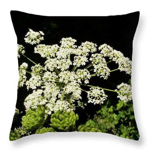 Flower Throw Pillow featuring the photograph Forest Lace by VLee Watson