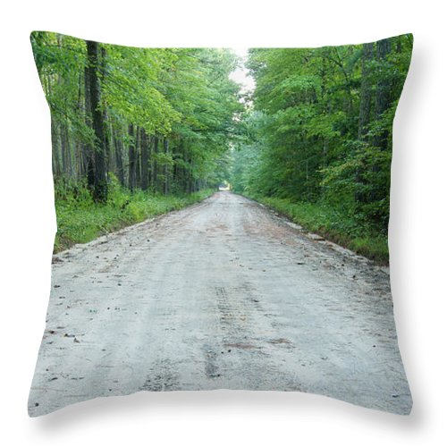 Road Throw Pillow featuring the photograph Forest Lane by Benjamin Reed