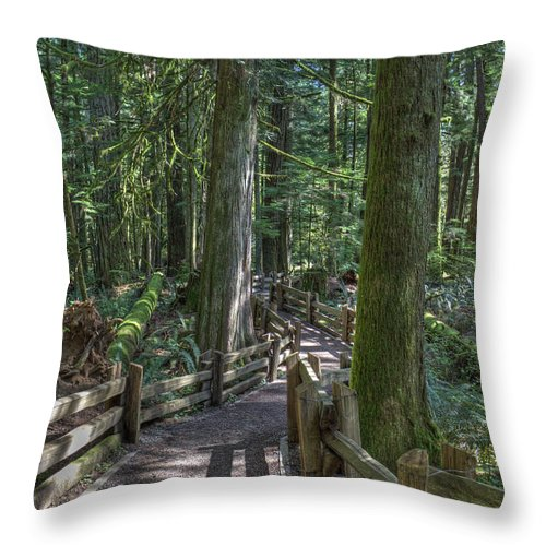Rail Fence Throw Pillow featuring the photograph Forest Path by Randy Hall