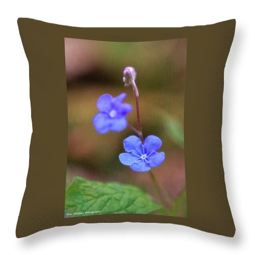 Flower Throw Pillow featuring the photograph Forget Me Not by Fran Gallogly