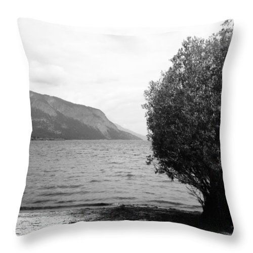 Landscapes Throw Pillow featuring the photograph Forgive My Intension by The Artist Project