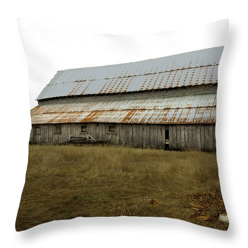 Abandoned Beauty Throw Pillow featuring the photograph Forgotten Farmstead by Kandy Hurley
