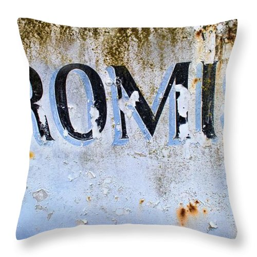 Broken Throw Pillow featuring the photograph Forgotten Promise by Norma Warden