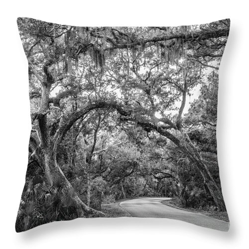 Oak Tree Throw Pillow featuring the photograph Fort Clinch Live Oaks by Dawna Moore Photography