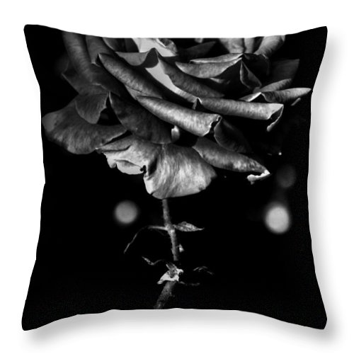 Flower Throw Pillow featuring the photograph Forth Then Bled by The Artist Project