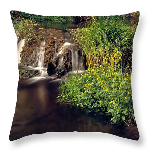 Arizona Throw Pillow featuring the photograph Fossil Creek by Leland D Howard