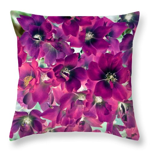 Flower Throw Pillow featuring the photograph Found Rose - Photopower 1742 by Pamela Critchlow