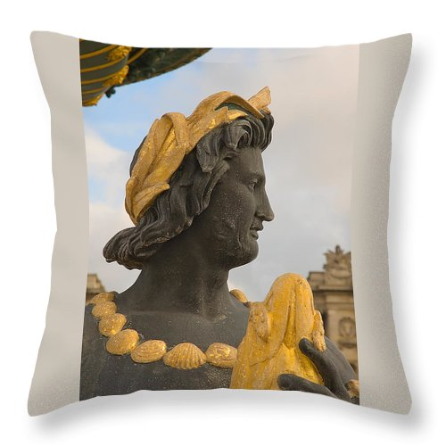 Paris Throw Pillow featuring the photograph Fountain Detail by Mick Burkey