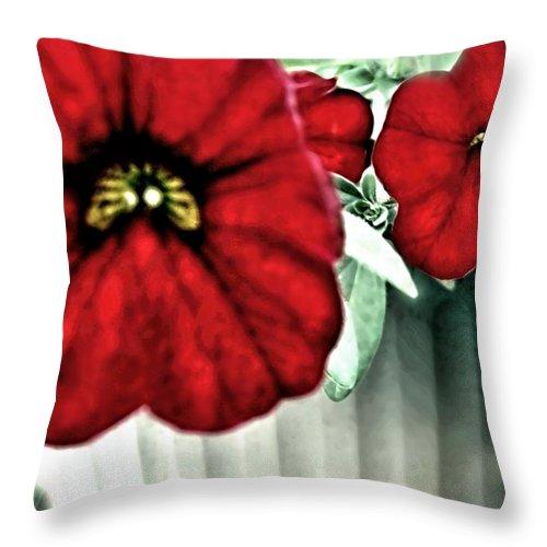 Artiste Danielle Parent Throw Pillow featuring the photograph Four Petunias Hanging by Danielle Parent
