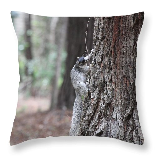 Fox Throw Pillow featuring the photograph Fox Squirrel Vertical by Jean Macaluso