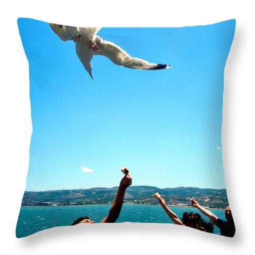 Bird Throw Pillow featuring the photograph Foxtrot For Food by Zafer Gurel