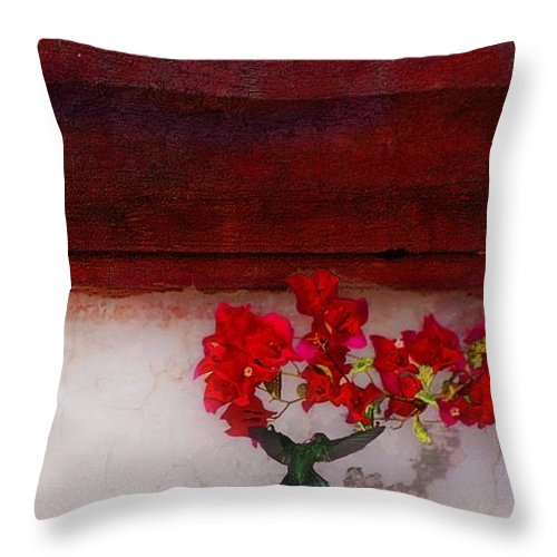 John+kolenberg Throw Pillow featuring the photograph Frailes by John Kolenberg