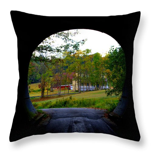 Farm Throw Pillow featuring the photograph Framed By A Tunnel by Cathy Shiflett