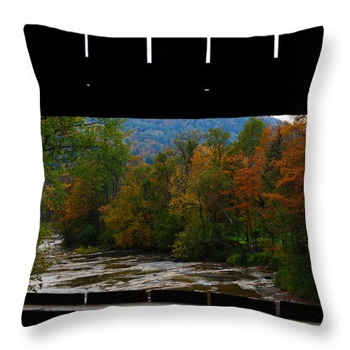 River Throw Pillow featuring the photograph Framed Fall Foliage by Mike Martin