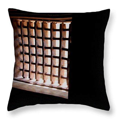 Freedom Throw Pillow featuring the photograph Freedom Lost by Richard Ortolano