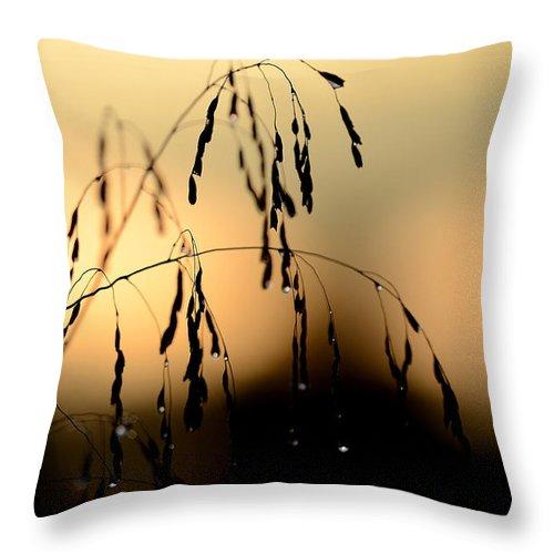 Sunrise Throw Pillow featuring the photograph Freedom by Melanie Moraga