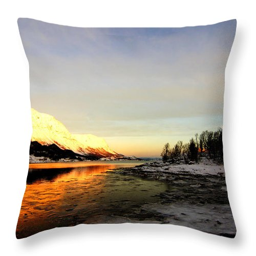 Sea Throw Pillow featuring the pastel Freezing Cold by Tom Vooght