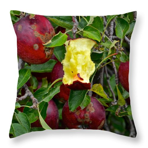 Fresh Throw Pillow featuring the photograph Fresh Fruit by Frozen in Time Fine Art Photography