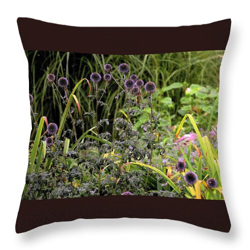 Nature Throw Pillow featuring the photograph Fresh Start by Ira Shander