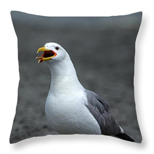 Great Salt Lake Throw Pillow featuring the photograph Friday Night At The Gull Bar And Grill by Michael J Samuels