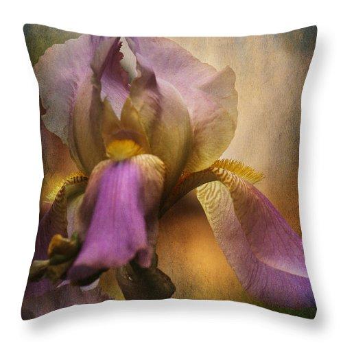 Iris Throw Pillow featuring the photograph Frilled Beauty by Sari Sauls