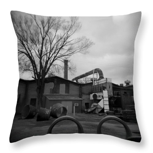 Frog Throw Pillow featuring the photograph Frog Switch Yard by Jean Macaluso