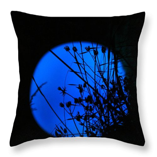 Moon Throw Pillow featuring the photograph From The Moon by Chrystel Caparros
