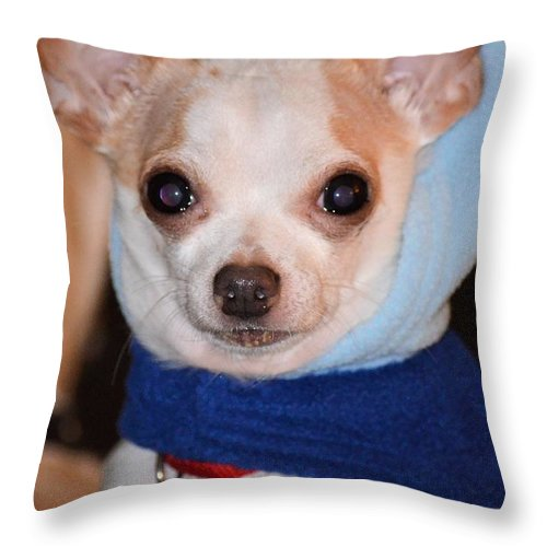 From Up In The Hood Throw Pillow featuring the photograph From Up In The Hood by Maria Urso