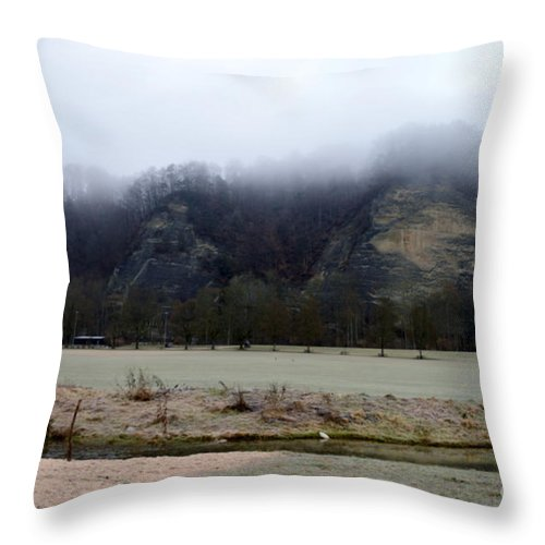 Landscape Throw Pillow featuring the photograph Frost And Fog by Felicia Tica