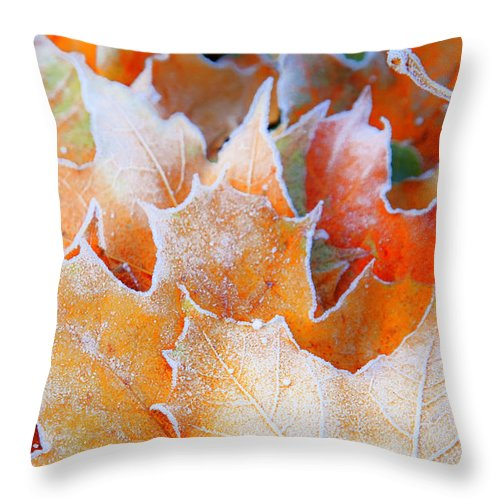 Autumn Throw Pillow featuring the photograph Frost Touched by Theresa Tahara