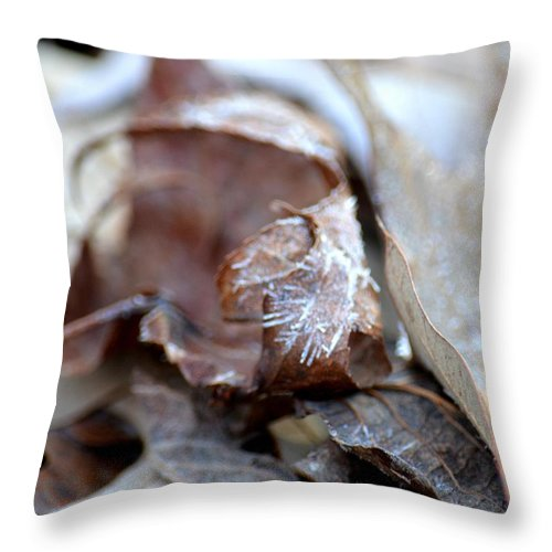 Frostcicles Throw Pillow featuring the photograph Frostcicles by Maria Urso