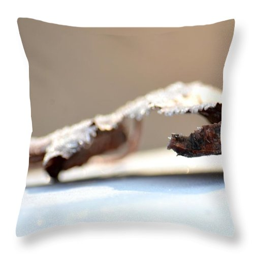Frosted Leaf Abstract Throw Pillow featuring the photograph Frosted Leaf Abstract by Maria Urso