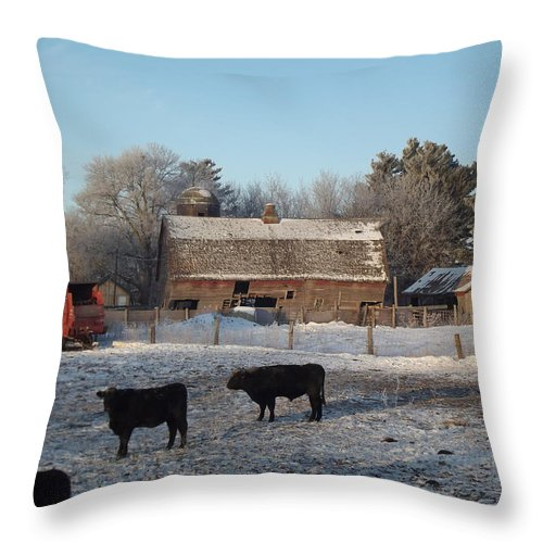 Frost Throw Pillow featuring the photograph Frosty Barnyard 3 by Bonfire Photography