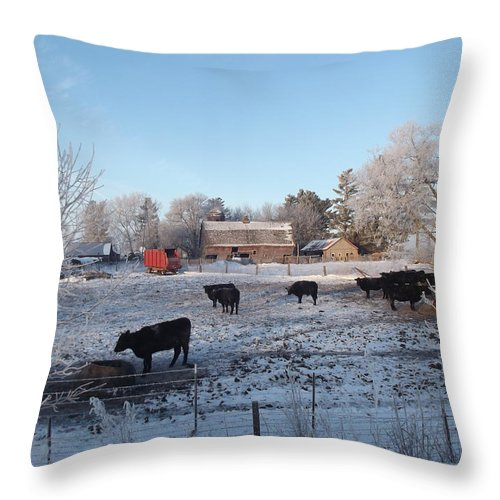 Frost Throw Pillow featuring the photograph Frosty Barnyard by Bonfire Photography