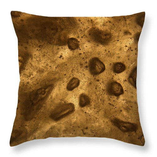 Frosty Throw Pillow featuring the photograph Frosty Bubbles by Sami Tiainen