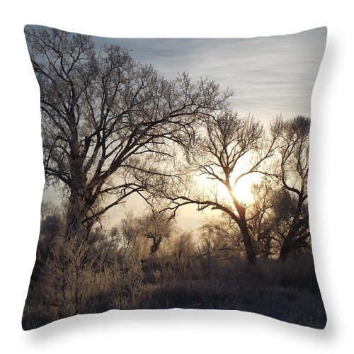 Frost Throw Pillow featuring the photograph Frosty Morn 4 by Bonfire Photography