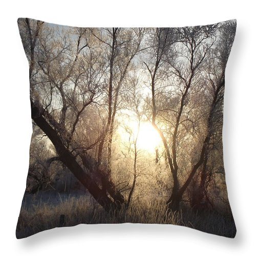 Frost Throw Pillow featuring the photograph Frosty Morn by Bonfire Photography