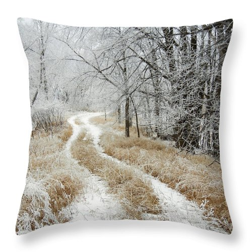 Landscape Throw Pillow featuring the photograph Frosty Trail by Penny Meyers