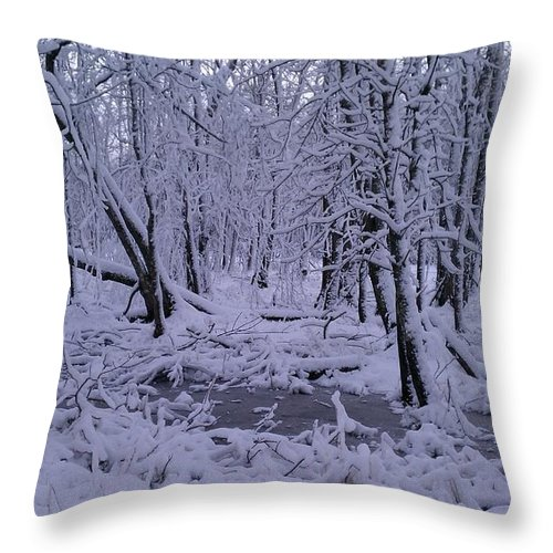 Landscape Throw Pillow featuring the photograph Frozen Forest by Joshua Thompson