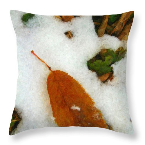 Nature Throw Pillow featuring the photograph Frozen Nature - Digital Painting Effect by Rhonda Barrett