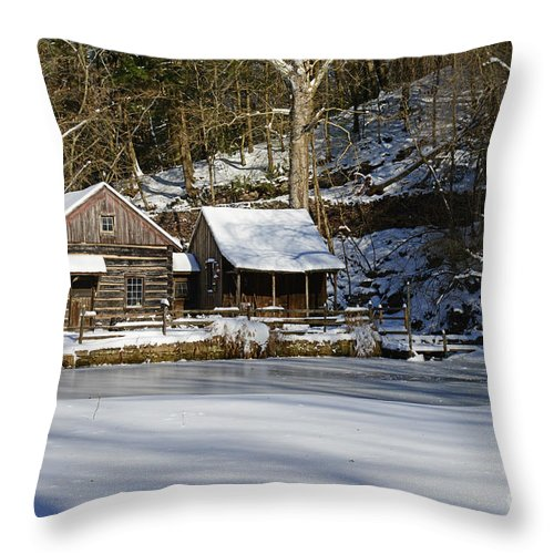 Paul Ward Throw Pillow featuring the photograph Frozen Pond by Paul Ward
