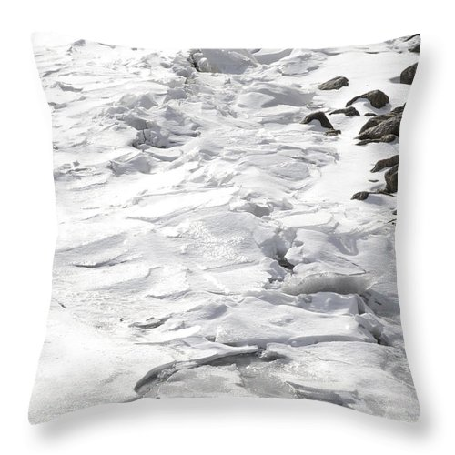 Natural World Throw Pillow featuring the photograph Frozen Shoreline by Urbanmoon Photography