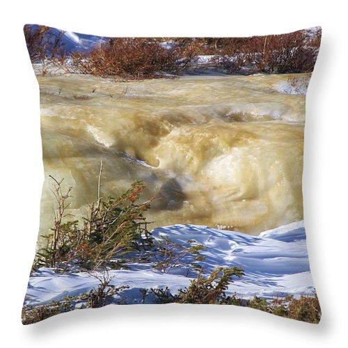 Frozen Throw Pillow featuring the photograph Frozen by Tonya Hance