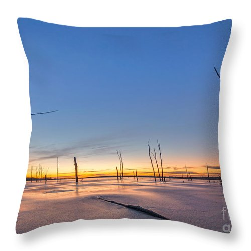 Frost Bite Throw Pillow featuring the photograph Frozen Trees by Michael Ver Sprill