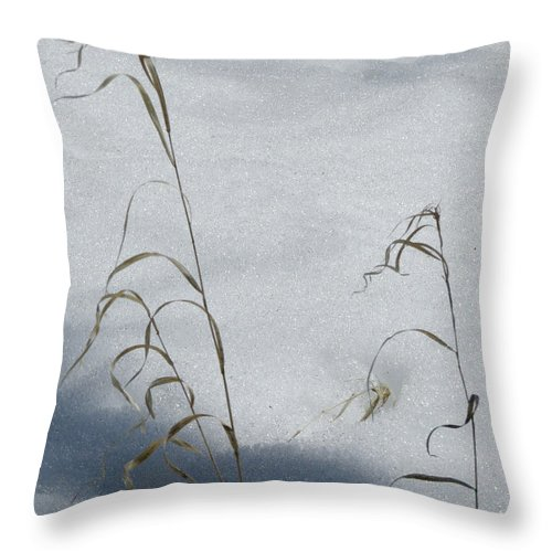 Scene Throw Pillow featuring the photograph Frozen Wheat by Mary Mikawoz