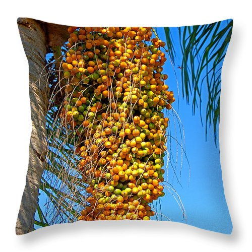 Palm Throw Pillow featuring the photograph Fruit of The Queen Palm by Donna Proctor