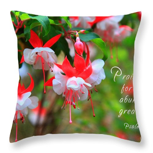 Fuchsia Throw Pillow featuring the photograph Fuchsia Blooms With Scripture by Jill Lang
