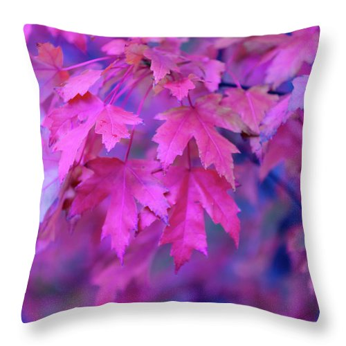 Tranquility Throw Pillow featuring the photograph Full Frame Of Maple Leaves In Pink And by Noelia Ramon - Tellinglife