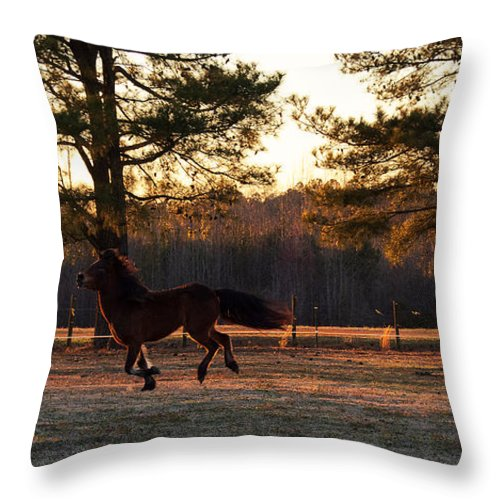 Popular Throw Pillow featuring the photograph Full Tilt Boogie by Paulette B Wright